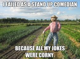 Crappy Lame Scarecrow Meme: jokes corny | Lame jokes | Pinterest ... via Relatably.com