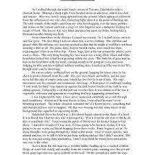 cover letter descriptive essay introduction example descriptive    cover letter format of expository essay format xdescriptive essay introduction example