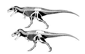 O maior dinossauro carnívoro de sempre Images?q=tbn:ANd9GcTwobPfcCwQIzYdGLT4O6OU3IymUt0PUwBJpgQs-9b3DRaILy9AiQ