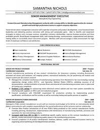 Resume Examples  Examples Resume Templates for Engineers       professional resume formats happytom co