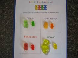 best ideas about chemistry science fair projects gummy bear science worksheets this worksheet is simply there for you to display your before