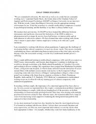 cover letter diversity essay examples cover letter proffesional diversity essay examples cover letter easy on the eye smdep diversity essay free