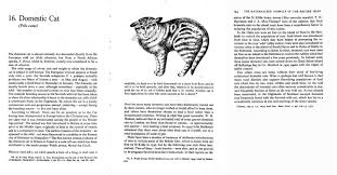 index of archiving folklore  u book the naturalized animals of the british isles domestic cat 434 jpg