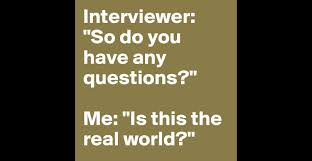 interviewer so do you have any questions me is this the real interviewer so do you have any questions me is this the real world post by chipdicks on boldomatic