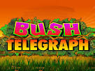 Images & Illustrations of bush telegraph