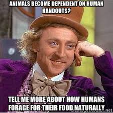 animals become dependent on human handouts? tell me more about how ... via Relatably.com
