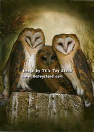 TK'S Toy Stand - Tree Free Greetings - Owls