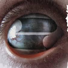 <b>Crazy Eyes</b> by <b>Filter</b> on Spotify