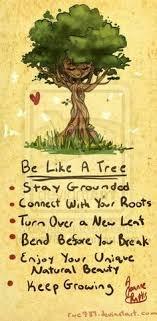 Family Tree Quotes on Pinterest | Genealogy Quotes, Family Reunion ... via Relatably.com