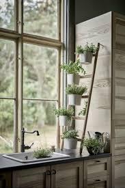 Kitchen Herb Garden Design 17 Best Ideas About Kitchen Herbs On Pinterest Indoor Herbs