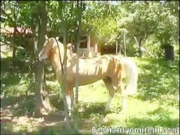 Most Relevant Videos Man Fucks Female Horse Bestialitysextaboo