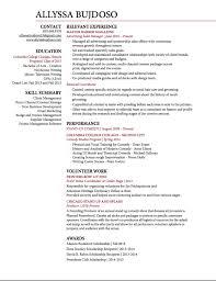 curriculum vitae allyssa bujdoso screen shot final resume 2017