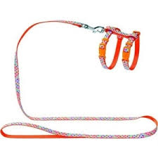<b>Шлейка Hunter Smart Harness</b> with Leash Set Seventies нейлон ...