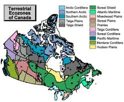 Ecozones of Canada   includes a lot of info and some pictures for each region