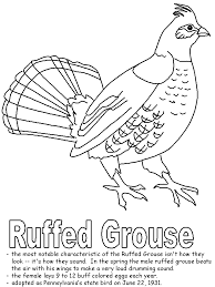 Small Picture Ruffed Grouse coloring page