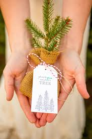 Holiday Shoot at Ide Christmas Tree Farm | Winter | Wedding gifts for ...