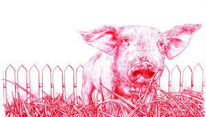 in vitro meat animal liberation