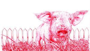 in vitro meat animal liberation