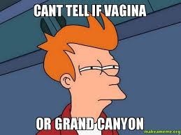 cant tell if vagina or grand canyon - Futurama Fry | Make a Meme via Relatably.com