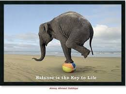 Balance is the key to life | Funny Dirty Adult Jokes, Memes & Pictures via Relatably.com