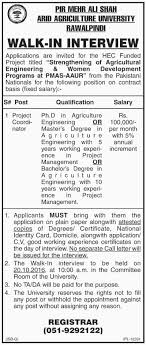 jobs in project coordinator job vacancy available at pir mehr ali latest jobs in project coordinator job vacancy available at pir mehr ali shah arid agriculture university rawalpindi