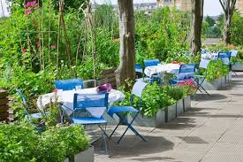 Image result for Alfresco gardening