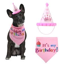 High Quality <b>Sequined Pet</b> Birthday Hat with Bib Cat <b>Dog</b> Party Hat ...
