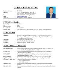 resume templates cute programmer cv template in  85 inspiring resume templates