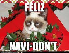 Grumpy Cat Christmas on Pinterest | Funny Grumpy Cats, Grumpy Cat ... via Relatably.com