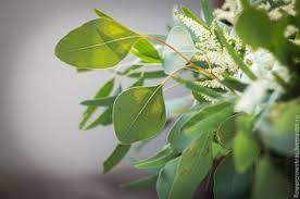 Купить Венок и <b>букет</b> для лесной нимфы - оливковый ...