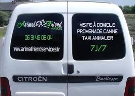 """Résultat de recherche d'images pour """"taxi animaux domestiques"""""""