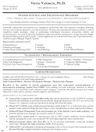 Technical Resume Examples Chief Technology Officer Coo Sample       sample technical resume