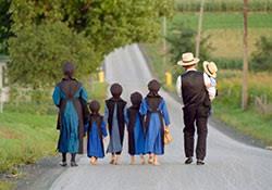 「Amish」の画像検索結果