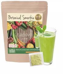 Lapovo Botanical Beverage Enzyme Powder | Lazada