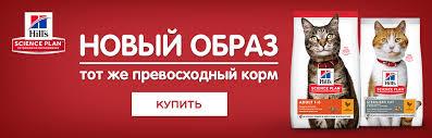 Интернет-магазин товаров для животных в Ростове-на-Дону ...