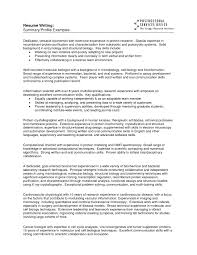 examples of excellent resume profiles cipanewsletter example of resume profile template