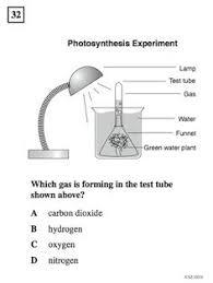 science essay ideas earth science essay ideas