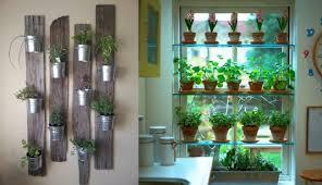 Kitchen Herb Garden Design Kitchen Herb Garden With Light How To Keep The Kitchen Herb