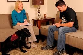 Οι σκύλοι... ''επιλέγουν'' τους φοιτητές