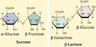 lactose gif