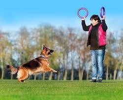 <b>пуллер</b> стандарт - <b>тренировочный снаряд</b> для крупных собак оптом
