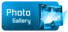 Image result for photo gallery icon png