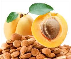 apricot kernel ile ilgili görsel sonucu
