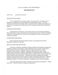 resume cover letter cake baker job description pastry chef best photos of sample job description ceo job description sample ceo job description cv ceo job