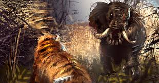 Image result for tiger and elephant fight