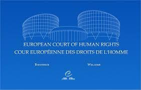 Image result for European Convention on Human Rights LOGO
