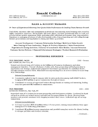 Resume Examples  Sales Account Manager Resume Objective With Proficiencies In Account Development And Customer Service     Rufoot Resumes  Esay  and Templates
