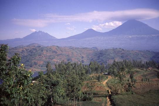 Muhavura Volcano