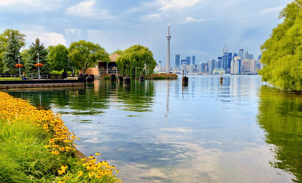 Renovation Services in Toronto, ON
