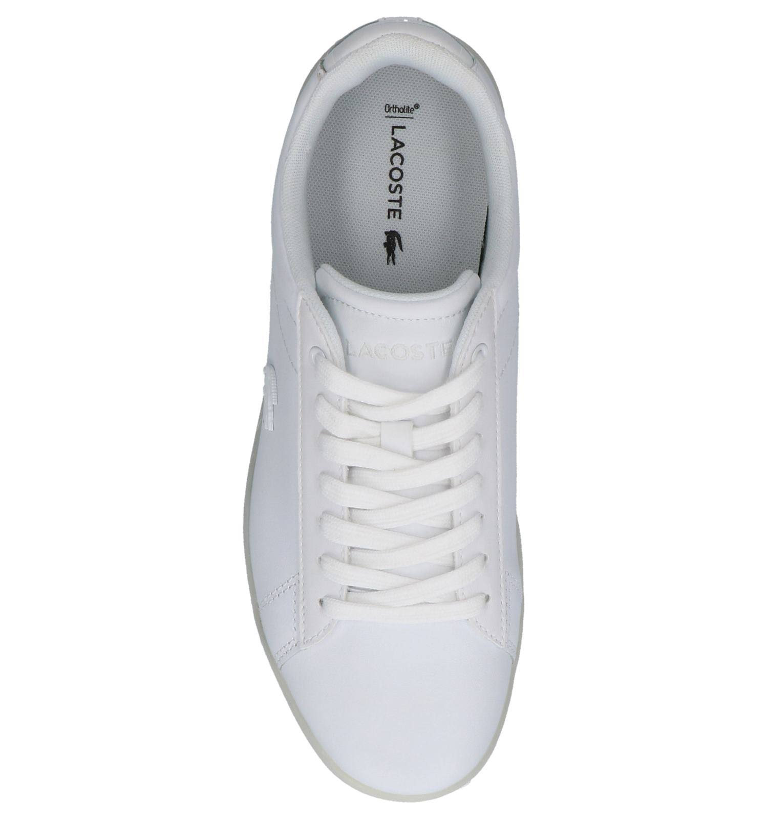Sneakers Sneakers Wit Lacoste Evo Lacoste Wit Carnaby qqvE8